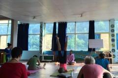 rishikesh-ayurved-4