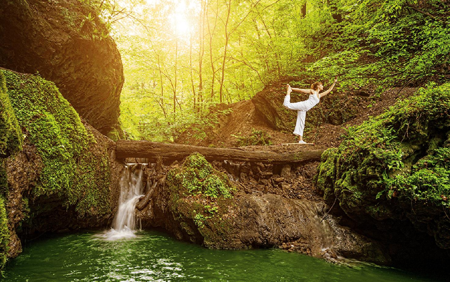 Ayurveda and Yoga Course