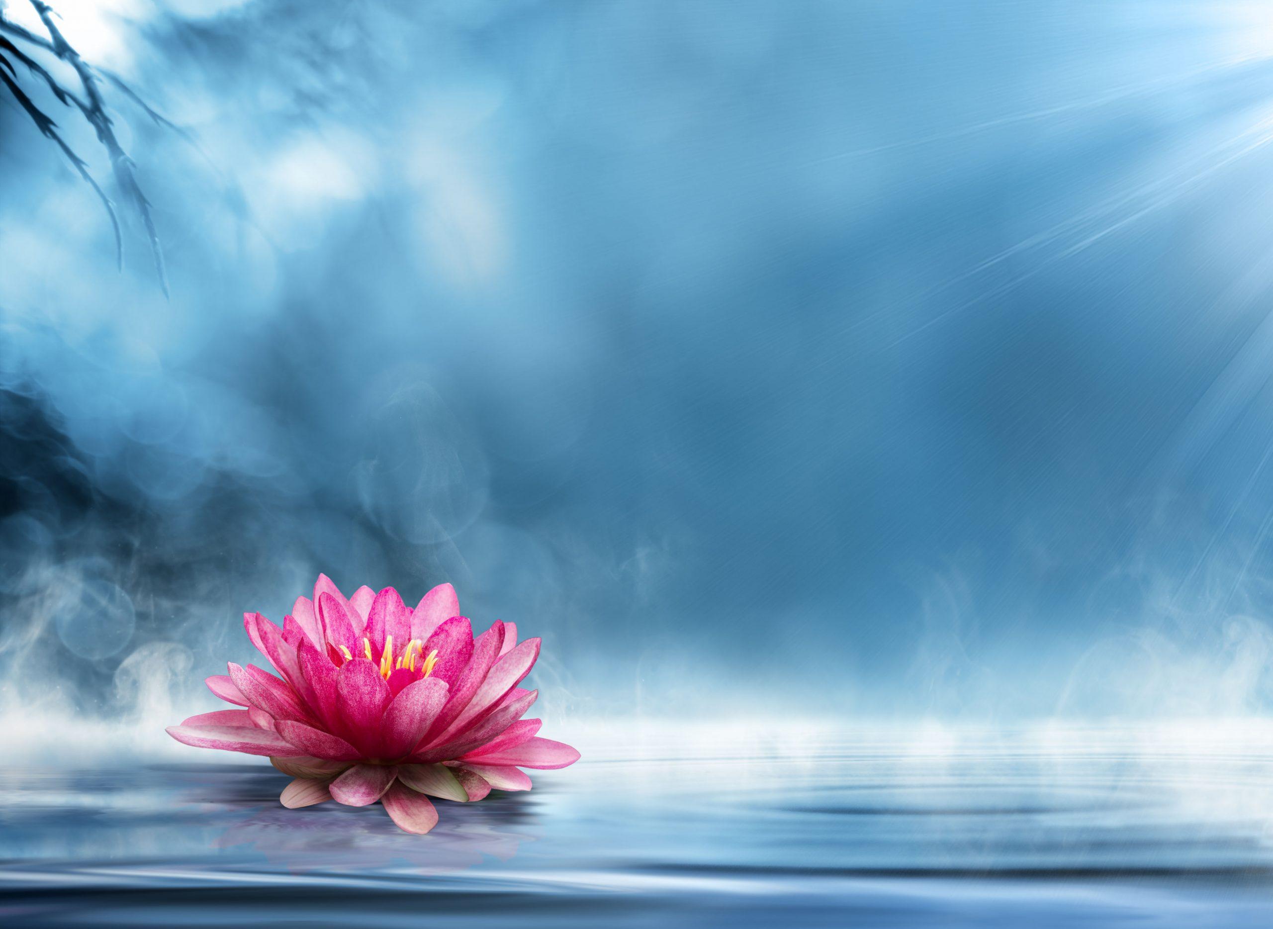 ayurveda spiritual healer